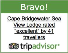 tripadvisor_bravo